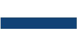 milenijum logo